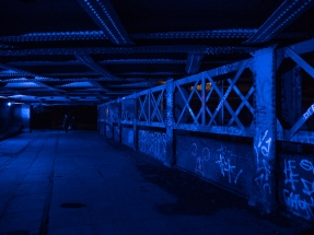 Royal Canal by night