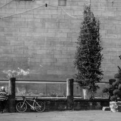 Piazza del Duomo, Pistoia
