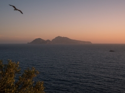 Capri at sunset