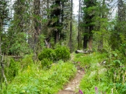 trek to Upper Multyn Lake