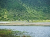 Around Napa Lake