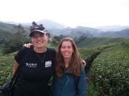 BOH Tea Plantation with Johanna