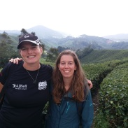 BOH Tea Plantation with Johanna