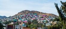 colourful suburbs