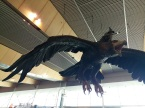 all sorts of things can land at Wellington airport