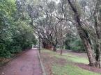 walk to the War Memorial Museum