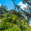 trek from Hahei to Cathedral Cove