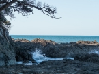 Little Palm beach