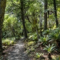 Raikura trail day 1