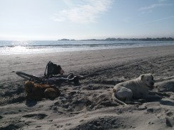 Chilling on the beach with the two bodyguards